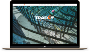programador-web-freelance-Tradef